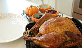 Turkey Dinner. Perfect turkey right out of the oven Royalty Free Stock Images