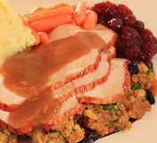 Turkey dinner. Shallow dof, focus on the turkey Royalty Free Stock Images