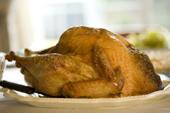 Turkey Dinner. Horizontal image of a turkey dinner, typical of Thanksgiving, or Christmas Stock Photos