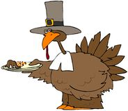 Turkey Dinner Plate Stock Photography