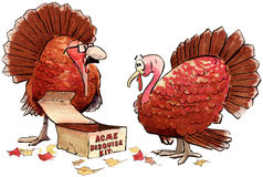 Turkey disguise Stock Photos
