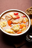 Turkey dumpling soup Royalty Free Stock Image