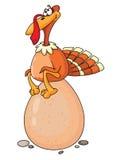 Turkey and egg Stock Image