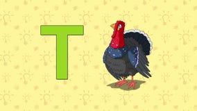 Turkey. English ZOO Alphabet - letter T. Animation English alphabet. Letter T and word Turkey. 2D handmade animation stock video footage