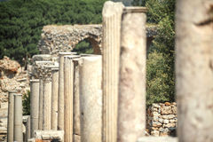 Turkey, Ephesus, ruins of the ancient roman city Royalty Free Stock Photo
