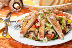 Turkey escalope on mixed salad Royalty Free Stock Photos