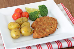Turkey escalopes with vegetables Stock Photography