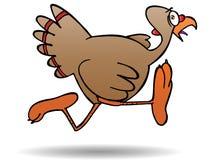Turkey escape Stock Photo