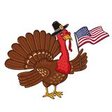 Turkey with flag of America vector illustration