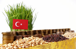 Turkey flag waving with stack of money coins and piles of wheat Stock Images