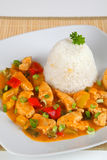Turkey goulash. With rice on a plate Royalty Free Stock Image