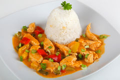 Turkey goulash. With rice on a plate Royalty Free Stock Photo