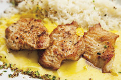 Turkey hen filet garnished with rice and curry sauce Stock Image