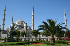 Turkey. Istanbul. Blue mosque Stock Photography