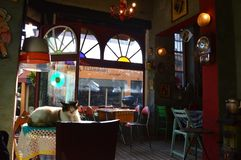 Turkey Istanbul - January 8, 2018: Cozy cafe in vintage style royalty free stock photography
