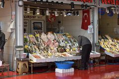 Variety of fish in the fish market of Istanbul