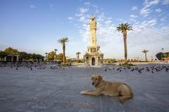 Turkey Izmir Old Clock Tower Royalty Free Stock Image
