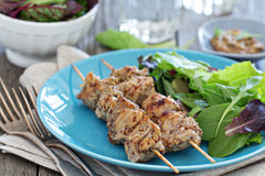 Turkey kebabs with mustard sauce Royalty Free Stock Photos