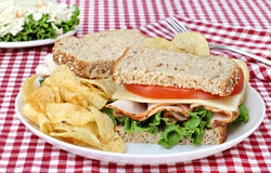 Turkey, Lettuce and Cheese Sandwich on Whole Grain Bread Stock Photos