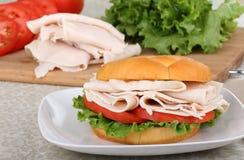 Turkey, Lettuce and Tomato Sandwich Royalty Free Stock Image