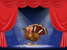 A turkey in the limelight Stock Photography