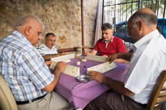 Turkey mahjong Stock Photography