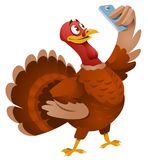 Turkey making selfie. Thanksgiving Day. Cartoon styled vector illustration. Elements is grouped. No transparent objects. Isolated on white Stock Image