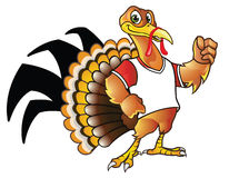 Turkey Mascot Stock Photo