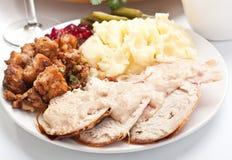 Turkey with Mashed Potato Royalty Free Stock Photo