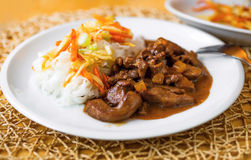 Turkey meat with rice noodles and fried vegetable strip Stock Photography