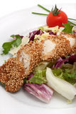 Turkey meat with sesame Royalty Free Stock Photography