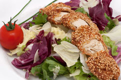 Turkey meat with sesame. And salad Stock Image