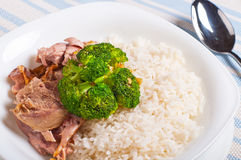 Turkey brocoli rice topping meal Royalty Free Stock Photos