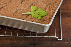 Turkey meatloaf royalty free stock photo