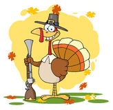 Turkey with pilgrim hat and musket. Hunting thanksgiving pilgrim turkey bird with a musket Stock Photos