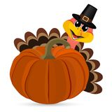 Turkey Pilgrimin on Thanksgiving Day Royalty Free Stock Images