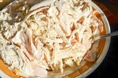 Turkey. A plate of shredded cooked turkey Royalty Free Stock Image