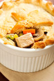 Turkey Pot Pie Stock Photo