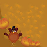 Turkey with pumpkins Royalty Free Stock Images