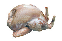 Turkey Raw and Plucked Royalty Free Stock Images