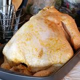Turkey ready to bake. stock photography