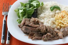 Turkey with rice Stock Images
