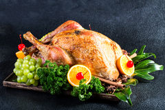Turkey roast Chicken for celebration Stock Images