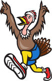 Turkey Run Runner Cartoon Isolated Stock Images