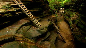 Turkey Run State Park Bear Hollow. Ladders ascend a steep slot canyon of Bear Hollow at Turkey Run State Park in Indiana stock video