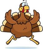 Turkey Running Royalty Free Stock Images
