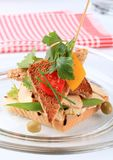 Turkey sandwich Royalty Free Stock Image