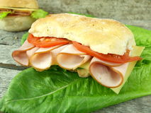 Turkey sandwich Stock Photography