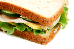 Turkey Sandwich. On whole wheat on a white background Royalty Free Stock Photography