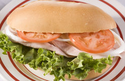 Turkey Sandwich. Turkey, Cheese, Lettuce, Tomato and Onion Sandwich royalty free stock photos